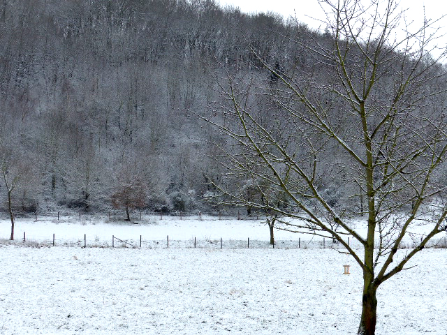 Heimbach im Winter